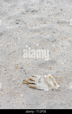 Latex plastic glove washed ashore on the tide. Metaphor for plastic pollution, sea pollution. - Stock Photo