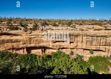 Cliff dwellings in Mesa-Verde-National Park, UNESCO world heritage site, Colorado, USA, North America - Stock Photo