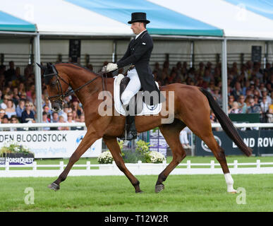 Tim Price and RINGWOOD SKY BOY during the dressage phase of the Land Rover Burghley Horse Trials, 2017 - Stock Photo