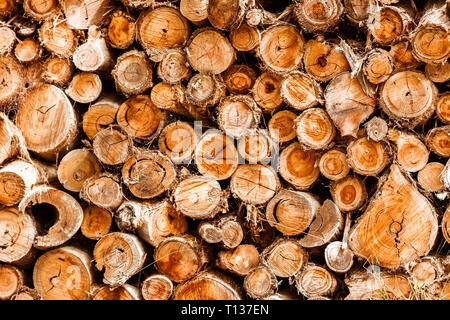 Wood logs stacked high ready for winter fireplace. - Stock Photo
