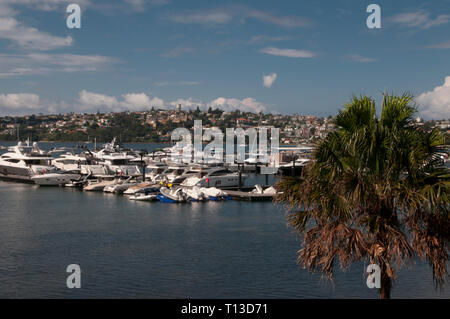 Marina at Rose Bay, Sydney - Stock Photo
