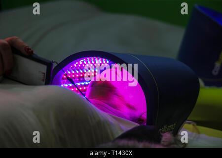 London UK 23  March 2019 Aesthetic Medicine Live show casing the latest technology  and suppliers for the beauty Industry and the new products and treatments for 2019 and beyond  @Paul Quezada-Neiman/Alamy Live News - Stock Photo