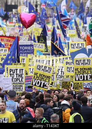 London, UK. 23rd Mar 2019.Hundreds of thousands of people take part in a People's March protest to try and get a People's Vote on Brexit. Britain was due to leave the EU on March 29, 2019, but this is now in doubt. The march started in Park Lane and finished in Westminster, outside the Houses of Parliament, London, UK on March 23, 2019. Credit: Paul Marriott/Alamy Live News - Stock Photo