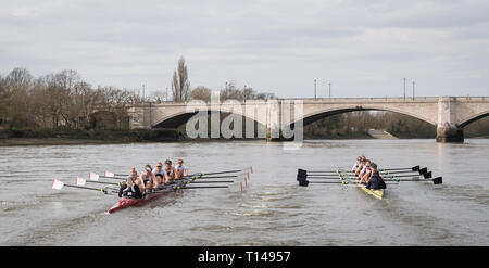 London, UK. 23rd Mar, 2019. 23 March 2019. Boat Race Fixture. OUWBC vs Molesey BC. As preparation for the The Boat Races, Oxford and Cambridge clubs participate in a number of Fixtures against other clubs, rowing the same Tideway course as used for the Boat Race. OUWBC Crew List (Yellow hulled boat):- Stroke: Amelia Standing, 7. Tina Christmann, 6. Beth Bridgman, 5. Liv Pryer, 4. Lizzie Polgreen, 3. Renée Koolschijn, 2. Anna Murgatroyd, Bow. Issy Dodds, Cox. Eleanor Shearer, Credit: Duncan Grove/Alamy Live News - Stock Photo