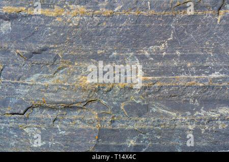 natural mineral stone - raw shungite mineral - Stock Photo