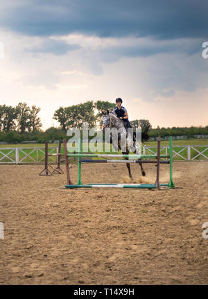 A woman jockey jumps over the barriers on a horse in a jumping competition during sunset. A young girl rider rides a horse riding in the saddle. - Stock Photo