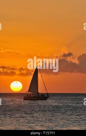 Sunset sail out in waters just off the docks and marina, at golden sunset, near Mallory Square on Key West, Florida Keys, Florida, USA - Stock Photo