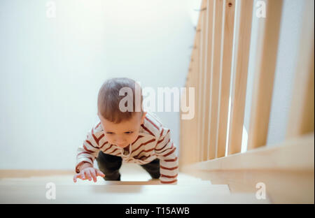 Toddler boy climbing up stairs at home - Stock Photo