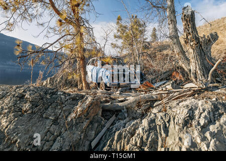 Dumped Car in middle of trees - Abandoned car in middle of trees - Kelowna, Okanagan Lake, Canada - Image - Stock Photo