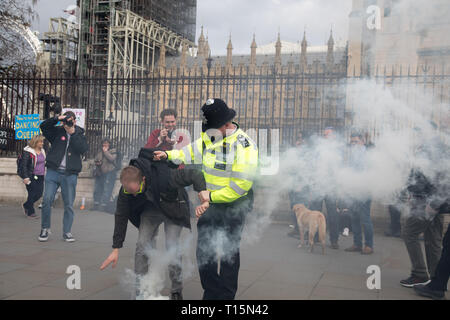 London, UK. 23 March, 2019. A protester, outside the House of Parliament, Westminster, ignites a firework and he is taken away by the police. Credit: Santo Basone/Alamy Live News - Stock Photo