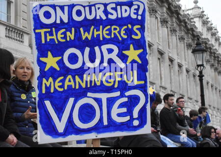 London, UK. 23rd Mar, 2019. Banner waved above the heads of the crowd, people demonstrate against leaving the EU, they want a peoples' vote, and revoking of article 50 Credit: Katherine Da Silva Credit: Katherine Da Silva/Alamy Live News - Stock Photo