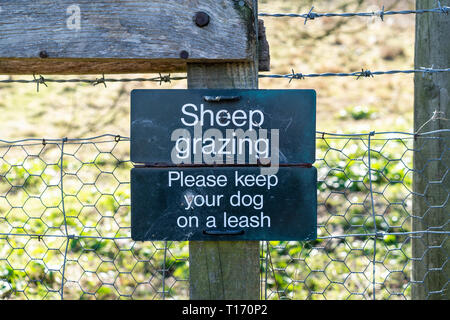 Sheep grazing please keep your dog on a leash sign - Stock Photo