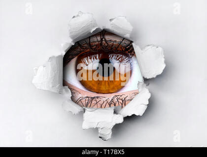 Woman brown eye looking through hole in ripped paper