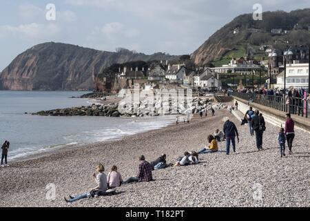 Sidmouth, UK. 24th Mar, 2019. A spot of warm sunshine tempted people onto the beaches at Sidmouth. Credit: Photo Central/Alamy Live News - Stock Photo