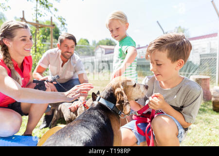 Family taking home a dog from the animal shelter - Stock Photo