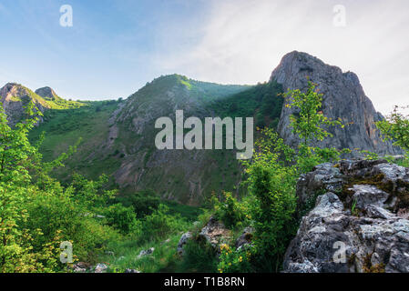 morning in the Valisoara gorge, romania. wonderful forenoon in the canyon. on the edge of a slope - Stock Photo
