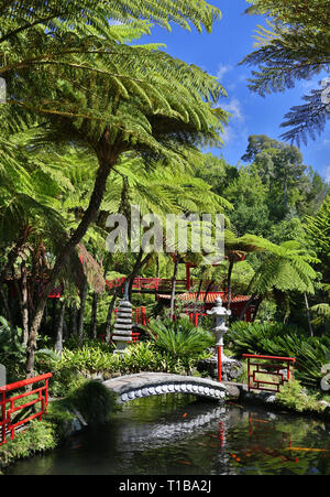 Oriental garden at Jardim Tropical Monte Palace (Madeira, Portugal)