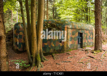 Camouflaged bunker WWII in the forrest - Stock Photo