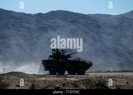 U.S. Marines with 1st, 3rd and 4th Light Armored Reconnaissance (LAR) Battalions participate in the Bushmaster Challenge at Marine Corps Air Ground Combat Center Twentynine Palms, California, March 23, 2019. Bushmaster Challenge is an annual live-fire event for LAR battalions to compete shooting targets with an M242 Bushmaster and the M240 coaxial machine gun. (U.S. Marine Corps photo by Lance Cpl. Alexa M. Hernandez) - Stock Photo