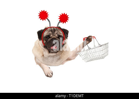 happy smiling pug puppy dog holding up wire metal shopping basket, wearing red diadem, isolated on white background - Stock Photo