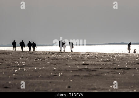 North Sea island Langeoog, Ostfriesland, Lower Saxony, beach walk, at the western end, winter, - Stock Photo