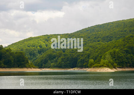 Irabia swamp shore, surrounded by beech tree (Fagus sylvatica) and European silver fir (Abies alba) mixed forest (Irati Forest, Navarre, Spain) - Stock Photo