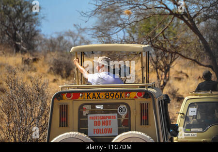 Kenya, Africa - August 2014: Wildlife photographer on location in Samburu Nature Reserve. Off road vehicles, rear view, bush background. - Stock Photo