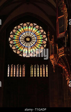 Rosette and organ in Strasbourg Cathedral - Stock Photo