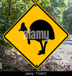 Beware of Cassowary crossing road sign in the Daintree National Park, Queensland, Australia - Stock Photo