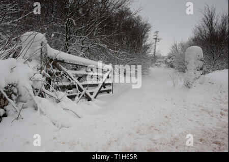 five bar gate covered in snow, open gate into field - Stock Photo