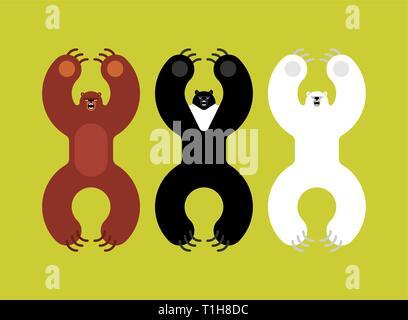 Breeds bears set. Grizzly and himalayan bear and polar bears. evil isolated cartoon style. Wild predator attacks - Stock Photo