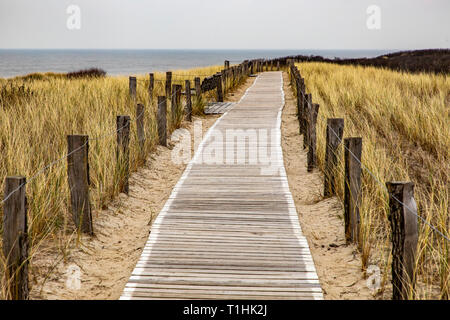 North Sea island Langeoog, Ostfriesland, Lower Saxony, hiking trail in the dunes to the North Sea coast, - Stock Photo