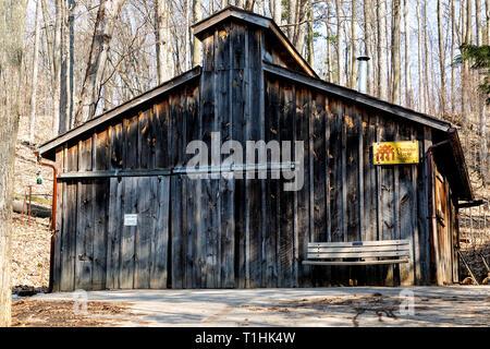 Sugar shack in maple sugar bush Ontario Canada - Stock Photo