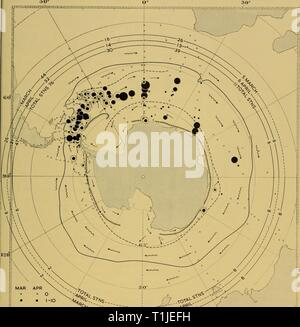 Discovery reports (1964) Discovery reports  discoveryreports32inst Year: 1964  HORIZONTAL DISTRIBUTION, GROWTH AND DYNAMICS OF DISPERSAL 347 - Stock Photo