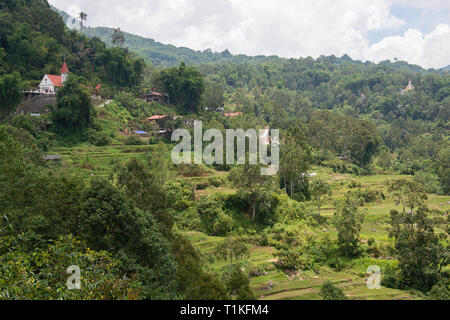 Tongkonan houses, traditional Torajan buildings, Tana Toraja is the traditional ancestral house of the Torajan people, in South Sulawesi,Indonesia. To - Stock Photo