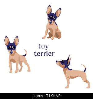 Vector illustration of Toy Terrier in various poses. - Stock Photo