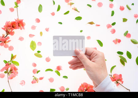 Woman holding blank white business card mock up in hand over white background with blooming springtime flower petals and leaves scattered around - Stock Photo