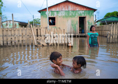 2015 flooding in Brazilian Amazon - children play in the dirt waters of Acre river at Taquari district, Rio Branco city, Acre State. Floods have been affecting thousands of people in the state of Acre, northern Brazil, since 23 February 2015, when some of the state's rivers, in particular the Acre river, overflowed. Further heavy rainfall has forced river levels higher still, and on 03 March 2015 Brazil's federal government declared a state of emergency in Acre State, where current flood situation has been described as the worst in 132 years. - Stock Photo