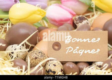 Different eggs in chocolate, chicken and quail and pastel tulips surrounding the text Happy Easter (Bonnes pâques is Happy Easter written in French) - Stock Photo