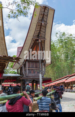 A funeral procession and ritual in a village in Tana Toraja, Sulawesi, Indonesia - Stock Photo