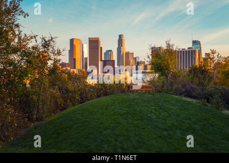 Spectacular view of downtown Los Angeles from the beautiful recreation area with green grass, trees and a bench. - Stock Photo