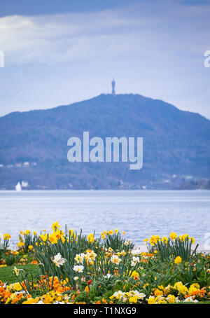 View from beach with beautiful flowers in Klagenfurt over lake Wörthersee to mountain Pyramidenkogel with tower in Austria - Stock Photo