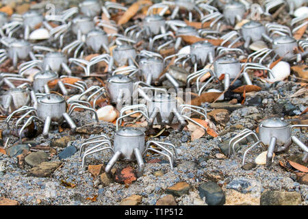 Metal Soldier Crabs on rocks near Canoe Point, Tannum Sands. - Stock Photo