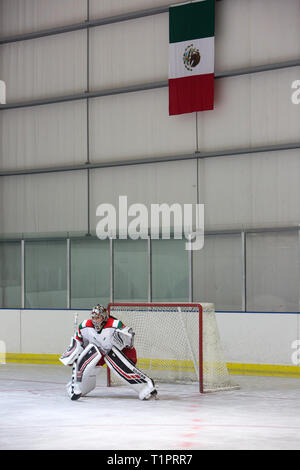 Mónica Evangelina Renteria Peñafort (L), 31, one of the goalkeepers of the Selección femenil de México de hockey sobre hielo, portrayed during a training session over the course of a 3-day intensive training week-end at the Winter Sports Center Metepec in Metepec, State of Mexico, Mexico on March 9, 2019. Mónica lives in Campestre Churubusco neighborhood in Mexico City, with her family. She studied gastronomy and culinary art. She is now a coach to goalkeepers at different ice hockey clubs in Mexico City as well as assistant coach for the under 18 Selección femenil de México de hockey sobre hi - Stock Photo