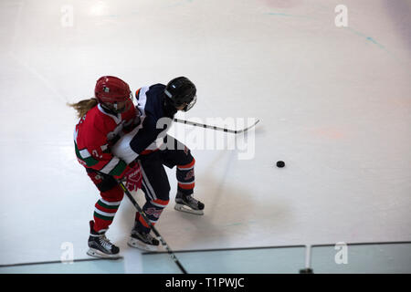 """The Selección femenil de México de hockey sobre hielo, plays against the Buffalos Metepec in the """"Midget"""" Hockey League during a match at the Winter Sports Center Metepec in Metepec, State of Mexico, Mexico on February 15, 2019. The score was 3-3. Founded in 2012, the Selección femenil de México de hockey sobre hielo is the first and only women's national ice hockey team in Mexico, a country where ice rinks are expensive and rare. In the 2017 IIHF Women's World Championship Division II in Iceland, the team defied expectations; They wonGroup B, securing their promotion to Group A,andbecamet - Stock Photo"""