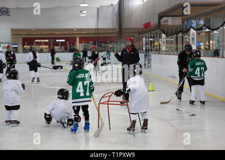 Frida Cárdenas Castro (C), 21, one of the forwards of the Selección femenil de México de hockey sobre hielo, gives instructions to a group of children she helps coach from the Stars team at the Forum Buenavista ice rink in Mexico City, Mexico on February 16, 2019. Frida lives with her family in Doctores, a working class neighborhood in Mexico City. She is in her second year of marketing at the Mexico Anáhuac University, where she has a high performance athlete scholarship. She started roller in-line hockey at age 6 and transitioned to ice hockey at age 14. Her family is also athletic and suppo - Stock Photo