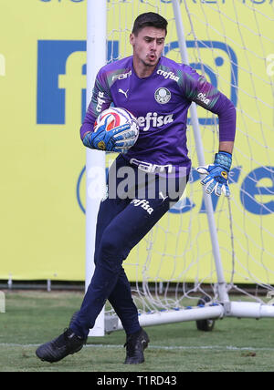 SÃO PAULO, SP - 28.03.2019: TREINO DO PALMEIRAS - Goalkeeper Matheus Teixeira, SE Palmeiras, during training, at the Football Academy. (Photo: Cesar Greco/Fotoarena) - Stock Photo