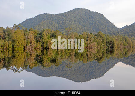 Reflections on the Gordon River - Stock Photo