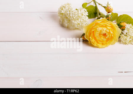 Festive flower composition on the white background. Overhead view - Stock Photo