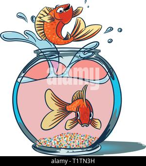 Goldfish Jumping. A fish jumping up from a goldfish bowl showing off as another fish sit at the bottom of the bowl staring out in shock. - Stock Photo